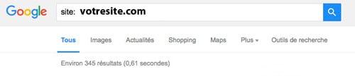 Nombre de page de mon site dans Google